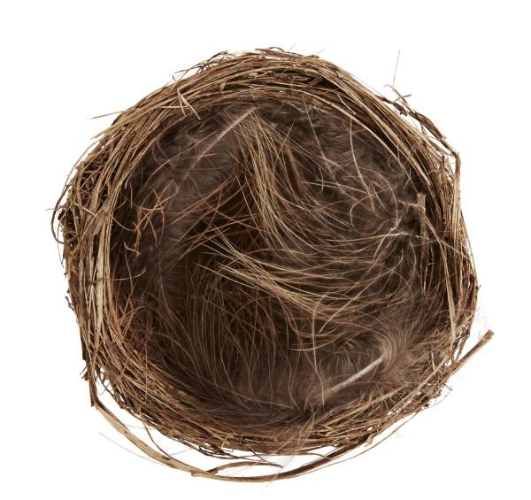 Nest mit Federn Naturbraun ø 9 cm