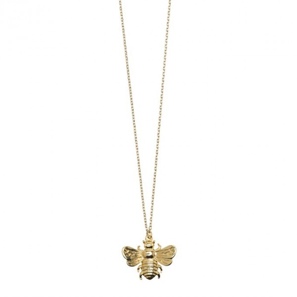 Kette 3D Fliege Gold von Timi