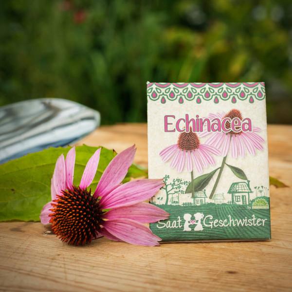 Saatgeschwister Echinacea von Die Stadtgärtner