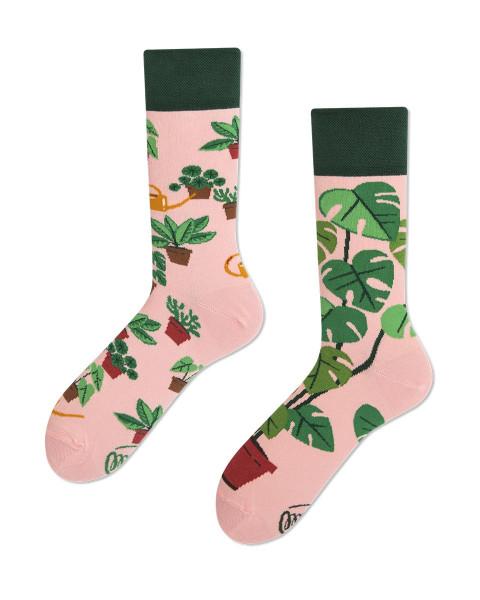 Many Mornings Socken Plant Lover 43-46