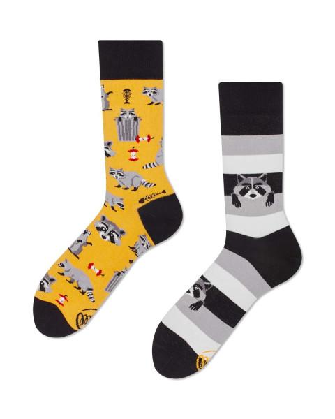 Many Mornings Socken Raccoon Bandit 43-46