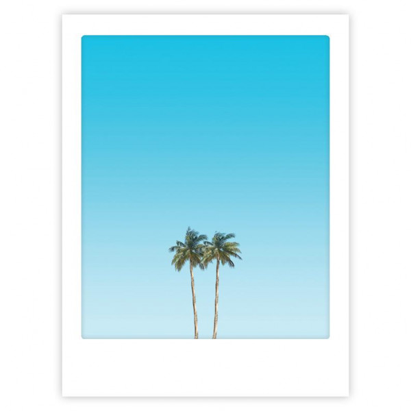 Pickmotion Poster happy palm trees