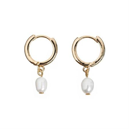 Ohrringe Small Hoop Pearl Gold von Timi
